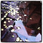 Thumbnail of http://instagram%20workshop
