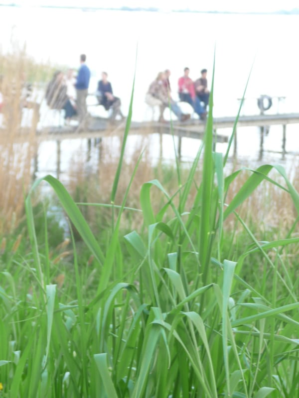 Waterland Fietstocht