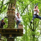Actie in het bos