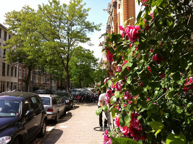 Oud Zuid en Vondelpark speurtocht